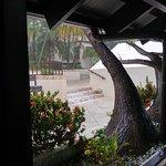 Foto de Renaissance St. Croix Carambola Beach Resort & Spa