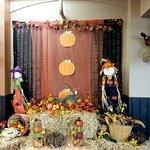 Fall & Birds