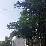 Straatje in Gustavia