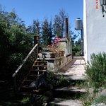 Hostel Punta Ballena Bar Foto