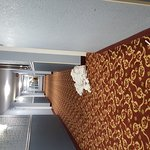 Photo de Lexington Hotel- Indianapolis Airport
