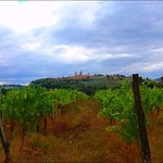 Tuscan vineyards and historical sites
