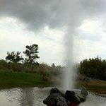 The geyser