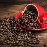 Coffee beans for sale from 100grams +