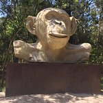 Giant Monkey head