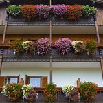 Photo de Hotel Gran Mugon