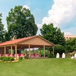 Embassy Suites by Hilton Greenville Golf Resort & Conference Center Foto