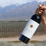 El vino: Clos de los Siete