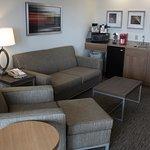 Family Suite Sleeper Sofa
