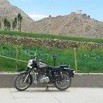 Photo of Hotel Royal Ladakh