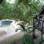 Photo de Pezulu Tree House Game Lodge