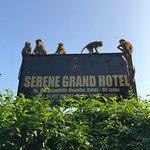Foto de Serene Grand Hotel