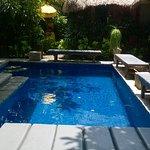 Petite piscine très intimiste