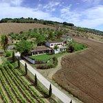 Photo of Agriturismo L'Arcadia