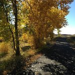 Roadrunner Trail