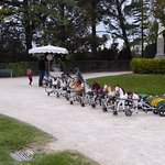 Kids tricycles for rent