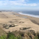 Santa Cruz Main Beach Foto