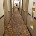 Foto de AAE Miami Beach Lombardy Hotel