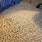 filthy carpet at the Hampton Inn Chicago/Elgin