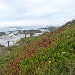 Beach --five-ten minute walk from Deer Haven