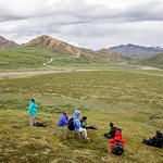 Day out on the alpine tundra in Denali National Park