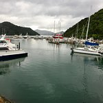 Picton harbour.