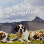 Photo of Barryland - Musee et Chiens du Saint-Bernard