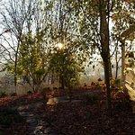 Oak Hill on Love Lane Bed & Breakfast Foto