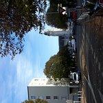 20161109_155601_large.jpg