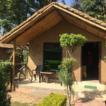 superb stay and its very near by two safaris dhella and jhirna