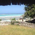 Karafuu Beach Resort and Spa照片