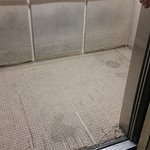 Disgusting, rickety elevator with stains, torn carpet. Felt gross even being in it.