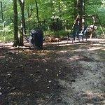 Cabins At Hickory Ridge-billede
