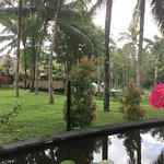 The Ubud Village Resort & Spa Picture