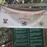 Entrance into the Lekki Conservation Centre Canopy Walkway