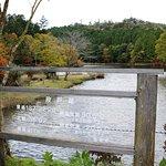 Lake Dando Foto