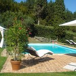 A glorious day at the pool in Cetona at our home.