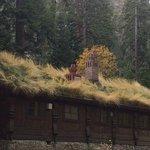 Vikingsholm Sod Roof