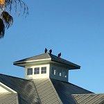 Photo de Ivey House