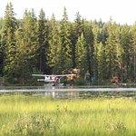 Blick vom Stellplatz auf den See