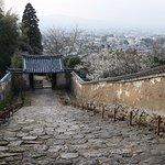 奈良市内が一望できます