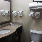 Photo de Comfort Suites Columbia