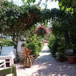 Photo de Harry's Paradise Garden Restaurant