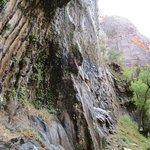 Weeping Rock Trail Foto