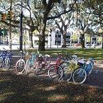 Savannah Bike Tours Foto