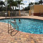 Holiday Inn Express Hotel & Suites Port St. Lucie West Foto