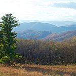 View from one of the many overlooks on Skyline Drive