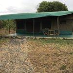 Фотография Porini Rhino Camp
