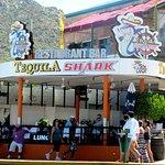 Tequila Shark, Cabo San Lucas, Mexico