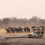 The Hide Game Drive with Ele's